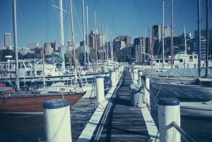 Sydney after 95 days